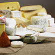 Cheese still life — 图库照片