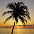 Stock Photo: Sunset over CaribbeSea, MarilGorda, Pinar del Rio Province, Cuba