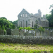 Ruins of Grey Abbey, Northern Ireland - Foto Stock