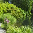 Stock Photo: KilmokeGardens, County Wexford, Ireland