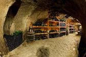 Bodega de vinos, bily sklep Male adamkovy, chvalovice, República Checa — Foto de Stock