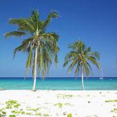 Maria la Gorda Beach, Pinar del Rio Province, Cuba — Stock Photo
