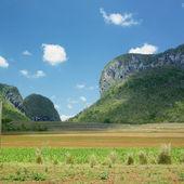 Vinales Valley, Pinar del Rio Province, Cuba — Stock Photo