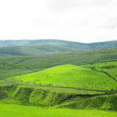 Sperrin Mountains, County Tyrone, Northern Ireland — Stock Photo