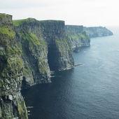 悬崖上的莫赫、 布伦、 克莱尔郡、 爱尔兰 — 图库照片