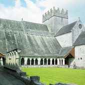 Holycross abbey, county north tipperary, irland — Stockfoto