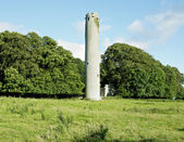 Kilree Monastic Site, County Kilkenny, Ireland — Stock Photo