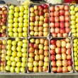 Stock Photo: Apples, Serbia