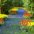 Keukenhof Gardens, Lisse, Netherlands — Stock Photo