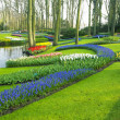 Keukenhof Gardens, Lisse, Netherlands — Stock Photo #10990333