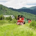 Bieszczadska wood railway, Dolzyca - Przyslup, Poland — Stock Photo #10990671