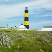 Lighthouse, St. John's Point, County Down, Northern Ireland — Stock Photo