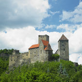 Hardegg Castle, Austria — Stock Photo
