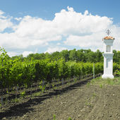 Village chapel with wineyard near Perna, Czech Republic — Stock Photo
