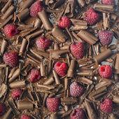 Raspberries with chocolate — Stock Photo