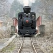 Last day of service of CKD steam locomotive n. 5 (1.4.2008), Cie - ストック写真