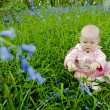 Baby girl sitting on meadow - Stock Photo
