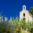 Grand cru vineyard and Chapel of St. Christopher, L'Hermitage, Rhone-Alpes, France - Stock Photo