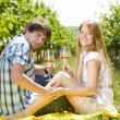 Couple at a picnic in vineyard — Stock Photo #11283581