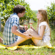 Royalty-Free Stock Photo: Couple at a picnic in vineyard