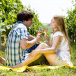 Couple at a picnic in vineyard — Stock Photo #11283599