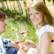 Couple at a picnic in vineyard — Stock Photo