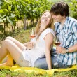Couple at a picnic in vineyard — Stock Photo #11283771
