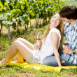 Couple at a picnic in vineyard — Stock Photo #11283783