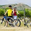 Bikers, ruins of Devicky castle with vineyard, Czech Republic — Stock Photo #11283787