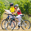 Bikers holding a map in vineyard, Czech Republic — Stock Photo #11283801