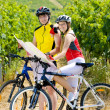 Stock Photo: Bikers holding a map in vineyard, Czech Republic