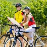 Bikers holding a map in vineyard, Czech Republic — Stock Photo