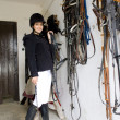 Stock Photo: Equestriin stable