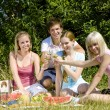 Stock Photo: Friends at a picnic