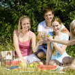 Friends at a picnic - Stock Photo