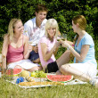 Friends at a picnic — Stock Photo #11284268