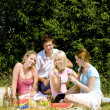 Friends at a picnic — Stock Photo