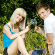 Stock Photo: Couple at a picnic