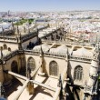 Cathedral of Seville view from La Giralda, Andalusia, Spain — Stock Photo