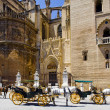 Carriages in front of Cathedral of Seville, Andalusia, Spain - Stock Photo