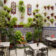 Patio restaurant (courtyard), Cordoba, Andalusia, Spain — Stock Photo #11284997