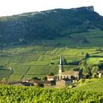 Постер, плакат: Vergisson with vineyards Burgundy France