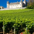 Chateau de Rully with vineyards, Burgundy, France — Stock Photo