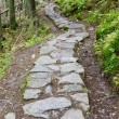 Path in Vysoke Tatry (High Tatras), Slovakia — Stock Photo #11285661
