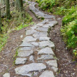 Stock Photo: Path in Vysoke Tatry (High Tatras), Slovakia