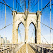 Brooklyn Bridge, Manhattan, New York City, USA — Stock Photo #11285920
