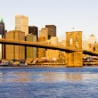 Brooklyn Bridge, Manhattan, New York City, USA — Stock Photo #11285980