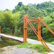 Suspension bridge, Blanchisseuse, Trinidad — Stock Photo