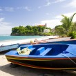 Stock Photo: Fishing boats, Sauteurs Bay, Grenada