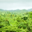Inland of Grenada, Caribbean — Stock Photo